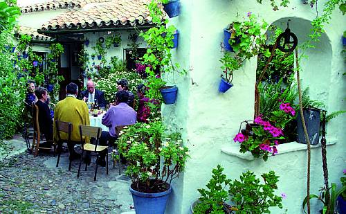 Fiesta Of The Patios In Cordova Intangible Heritage Culture