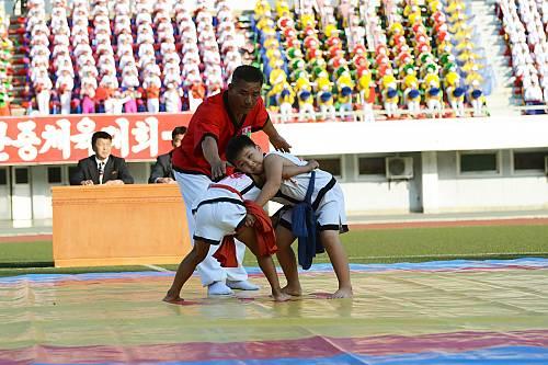 Traditional Korean wrestling (Ssirum/Ssireum) - intangible heritage