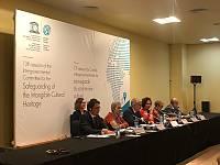 شبكة الميسرين العالمية: كيف يمكنها دعم البلدان في تنفيذ الاتفاقية؟