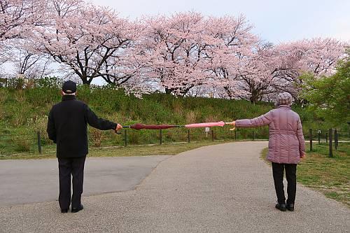 Distanciación física en Japón: Para evitar la propagación del coronavirus (COVID-19), dos personas mantienen la distancia sujetando un paraguas.